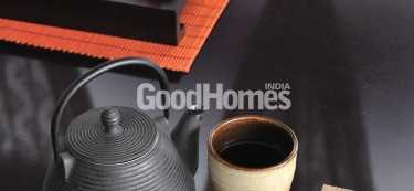 Good Homes Article