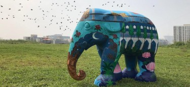 The Untold Truth Behind the Success of The Elephant Parade