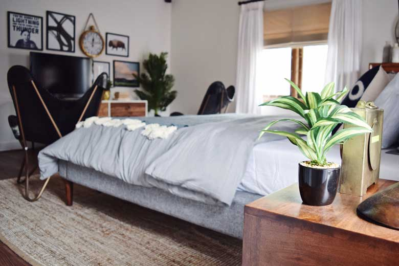 Plants in the bedroom