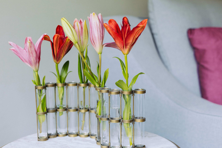 Test Tube Vase from Lohasmith