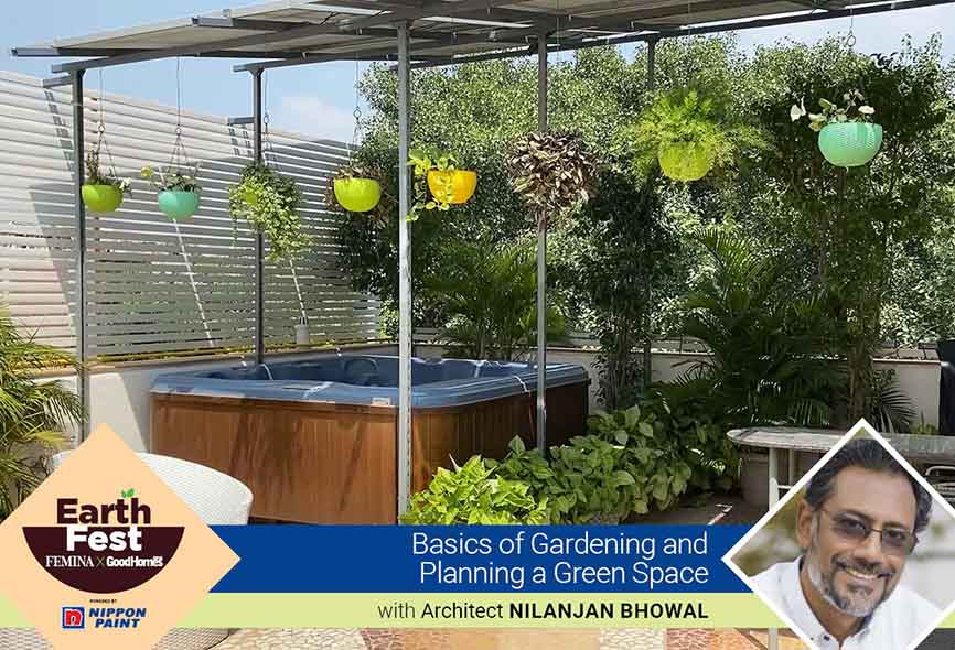 Basics of gardening and planning a green space