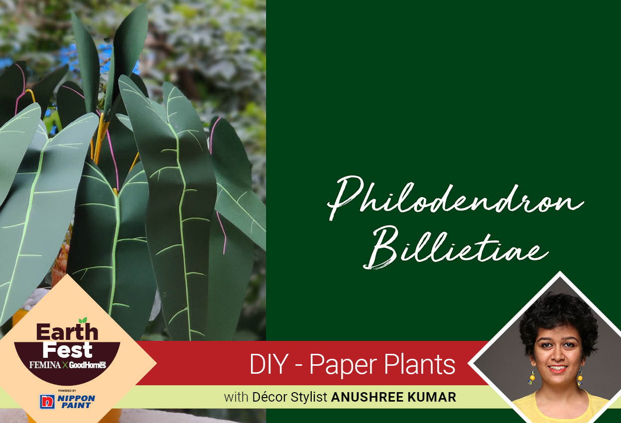 DIY- Paper Plants: Philodendron