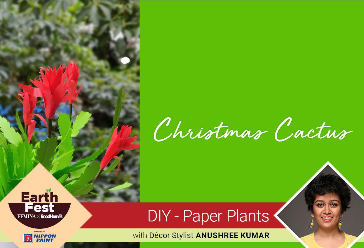 DIY- Paper Plants: Christmas Cactus