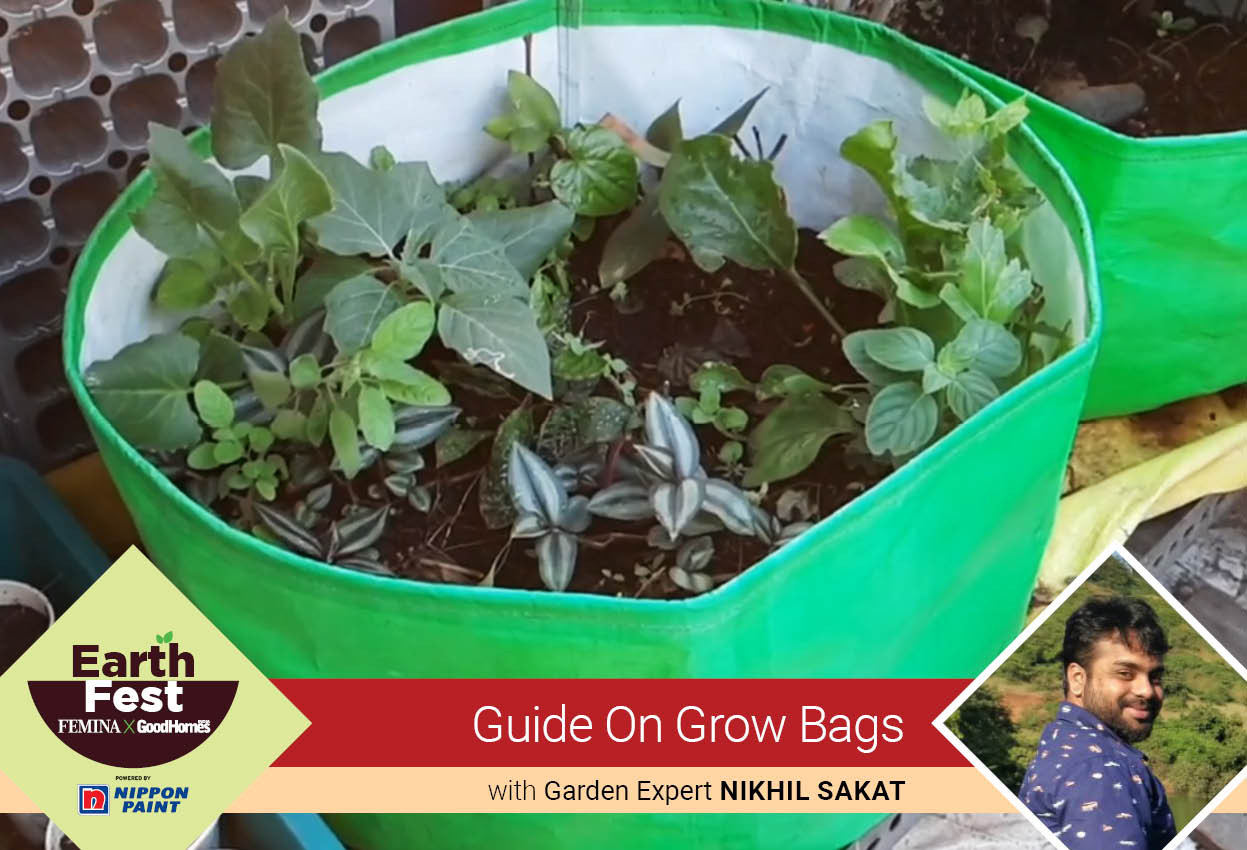 Guide on grow bags with Nikhil Sakat