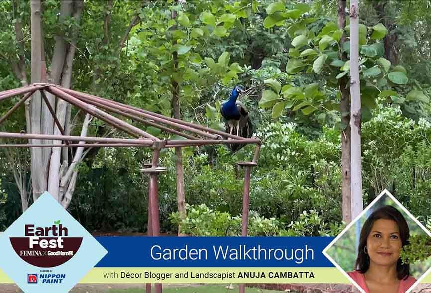 Garden Walkthrough