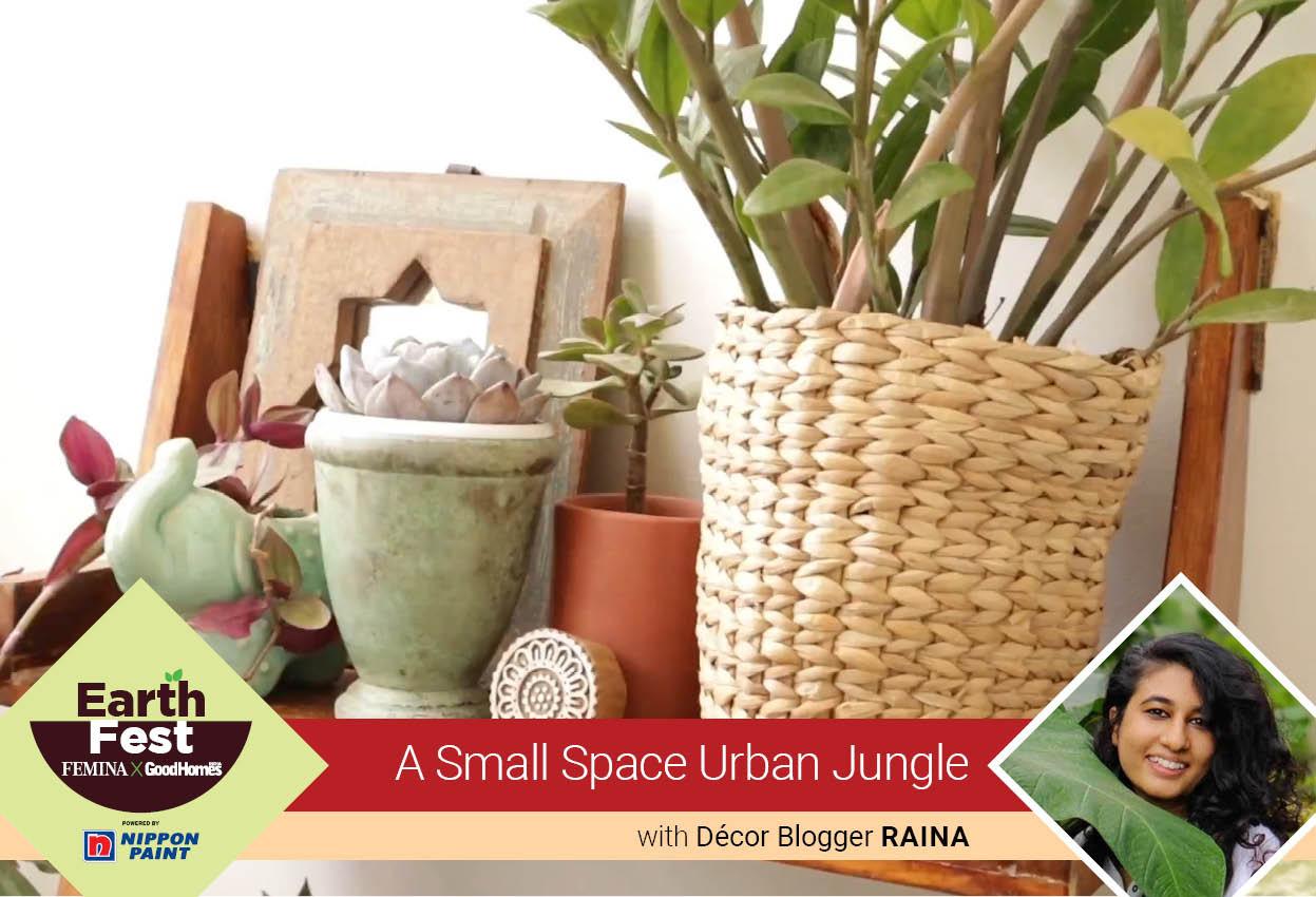 A small space urban jungle